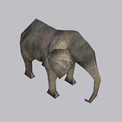 动物  大象 (3)