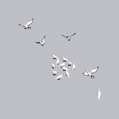 动物  (105)