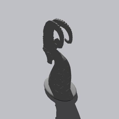 动物  (62)