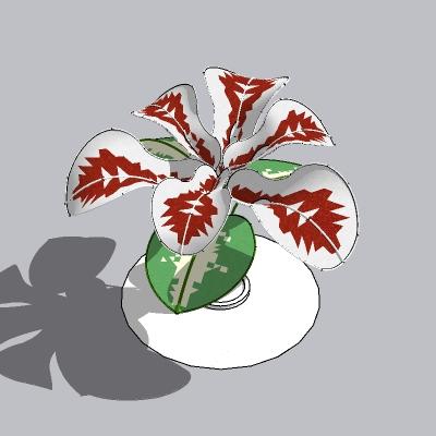 植物雕塑 (4)