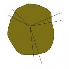 平面植物_002_景观设计模型