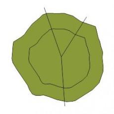 平面植物_003_景观设计模型