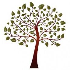 艺术植物_009_景观设计模型