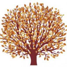 艺术植物_016_景观设计模型