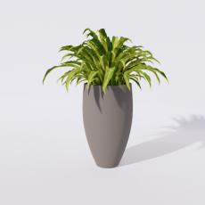 绿植_绿植16_Sketchup模型
