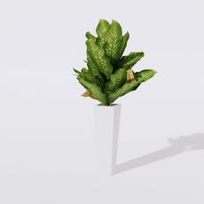 绿植_绿植30_Sketchup模型