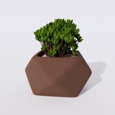 绿植_绿植64_Sketchup模型