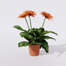 绿植_绿植94_Sketchup模型