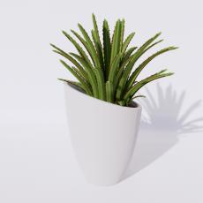 绿植_绿植96_Sketchup模型