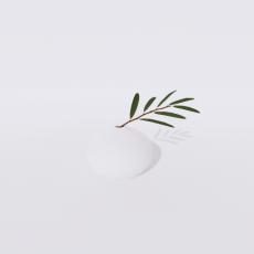 花_花12_Sketchup模型