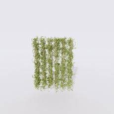 花_花206_Sketchup模型