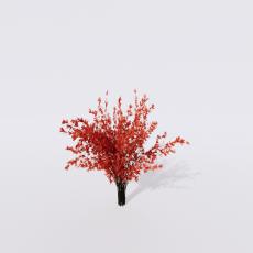 花_花213_Sketchup模型