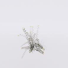 花_花218_Sketchup模型