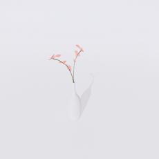 花_花22_Sketchup模型