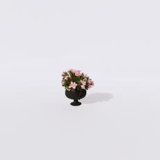 花_花48_Sketchup模型