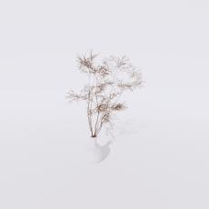 花_花4_Sketchup模型