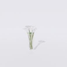花_花55_Sketchup模型