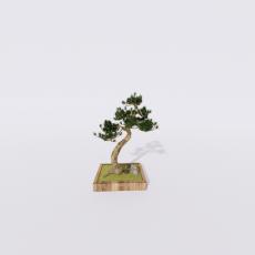 花_花7_Sketchup模型