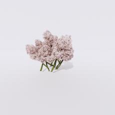 花_花85_Sketchup模型